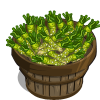 Wasabi Bushel-icon