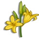 Daylily-icon