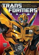 Prime-cover-bumblebee