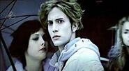 Alice brandon cullen 563