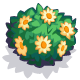 Orange Flower Bush-icon.png