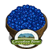 Organic Blueberries Bushel-icon