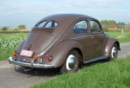 Beetle1