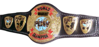 PCW Broadcast Championship