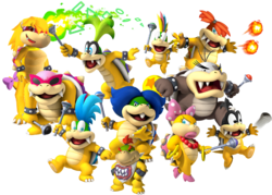 KoopalingsNSMBCA
