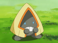 Ash Snorunt