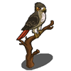 Red Tailed Hawk-icon