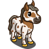 Mini Appaloosa-icon