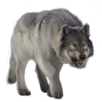 Huge item graywolf 01