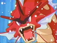 EP237 Gyarados Rojo