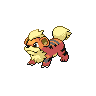 Growlithe NB