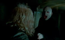 Voldemort confronting Ollivander