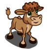 Gelbvieh Calf-icon