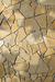 Stone Chip Habitat.png