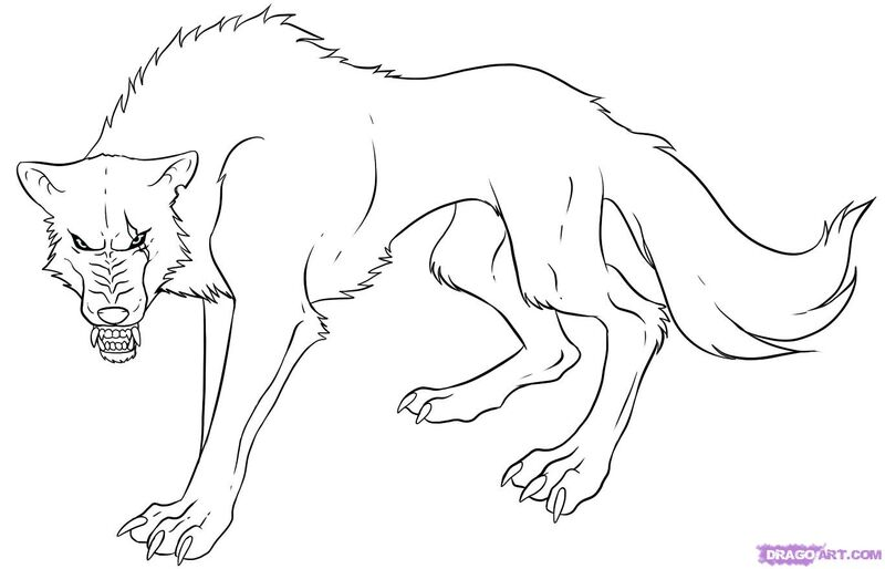 How Do You Draw A Wolf: How-to-draw-an-anime-wolf-step-7.jpg