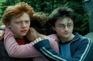 Ron, Hermione, Harry (4)