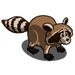 Raccoon-icon