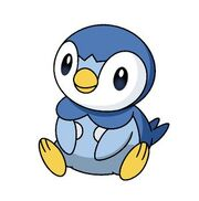 Piplup.jpg