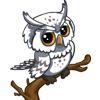 White Owl-icon