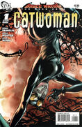 Bruce Wayne Road Home Catwoman 1