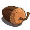 Acorn-icon