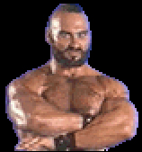 SFTMPortraitZangief