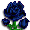Black Rose-icon