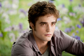 ILoveEdwardCullen-01.png