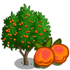 Golden Apricot Tree-icon