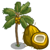 Golden Malayan Coconut Tree-icon