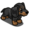 Dachshund-icon