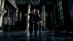 Greyback captured Hermione and Ron