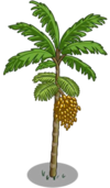 Peach Palm Tree2-icon