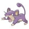 019Rattata