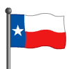 Texas Flag-icon