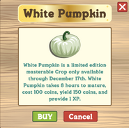 Limited White Pumpkins