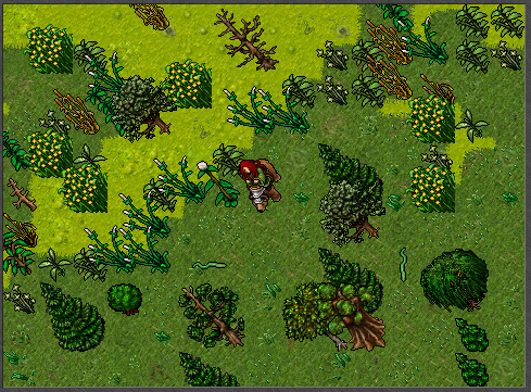 http://images1.wikia.nocookie.net/__cb20101118183719/tibia/en/images/9/95/Teaser_2_War_Bear.png