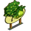 Guava Tree Mastery Sign-icon