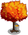 Maple2-icon