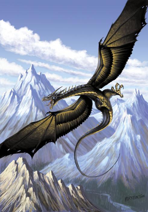 Wyvern Dragon: Dragon Wiki