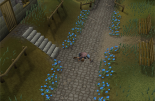 Gertrude%27s_Cat In the runescape kill monsters with runescape gold!