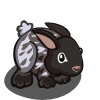 Silver Fox Rabbit-icon
