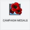 Campaign Medals PL