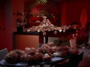 Tribbles in der Bar