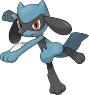 447Riolu