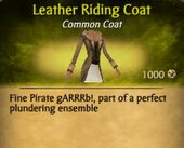 Leather Riding Coat