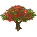 Poinciana Tree-icon