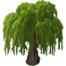 Willow Tree-icon