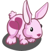 Heart Rabbit-icon