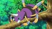 Pokemon shiny 170px-EE10_Ariados_brillante